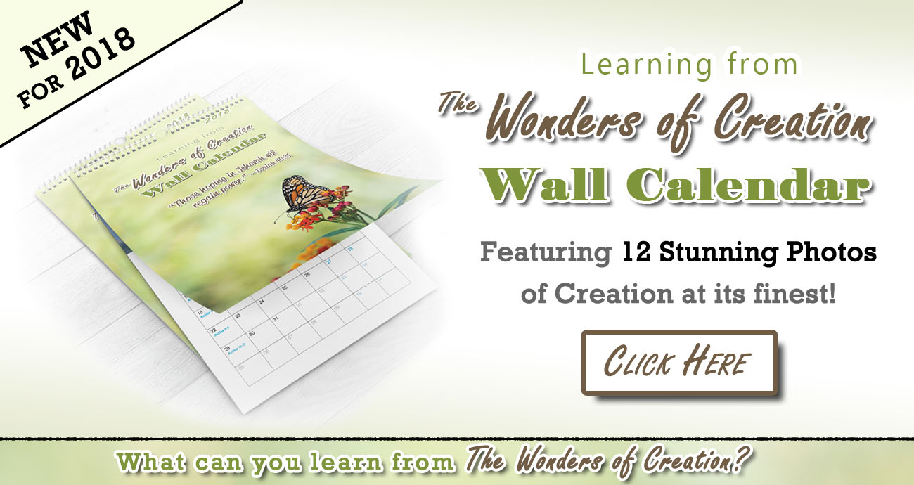 Main Banner - 2018 Wonders of Creation Calendar