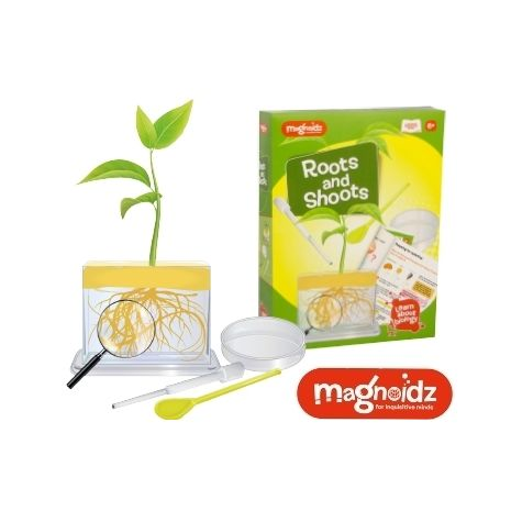 Magnoidz© Roots & Shoots Science Kit